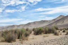 """Widok pustyni, gór, trawy i zasolonego †piękno na,"""" obraz stock"""