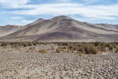 """Widok pustyni, gór, trawy i zasolonego †piÄ™kno na,"""" zdjęcia stock"""