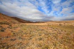 Widok pustynny krajobraz pod niebieskim niebem Obrazy Royalty Free