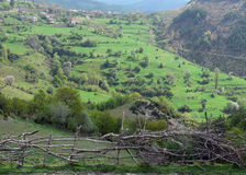 Widok Rhodope góry, Bułgaria Zdjęcie Royalty Free