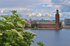 Widok Riddarfjärden w kierunku urzędu miasta Zdjęcie Royalty Free