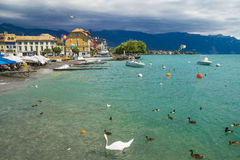 Widok Riviera 's Jeziorny Genewa przy Vevey Obraz Royalty Free