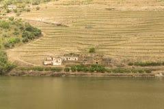 Widok rzeka, nieruchomości i winnicy Douro, Obraz Royalty Free