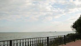 Widok rzeka od brzeg zdjęcie wideo