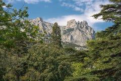 Widok sławna góra Petri, Crimea Zdjęcia Stock