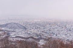 Widok Sapporo miasto w zimie zdjęcie royalty free