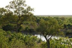 Widok Savuti kanał od nasz Luksusowego obozu Obraz Stock