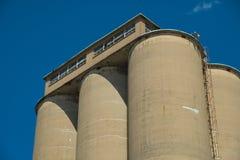 Widok sekcja zbożowa winda, agrarny łatwości comple zdjęcia royalty free