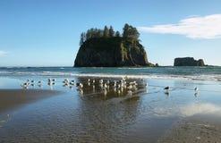 Widok skały w oceanie od Drugi plaży Zdjęcia Royalty Free
