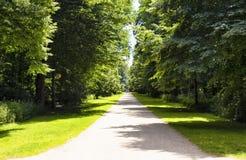 Widok sposób w Tiergarten Obrazy Stock