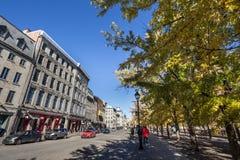 Widok Stary Montreal nadbrzeże lub Vieux Montreal, Quebec, w jesieni z żółtymi liści drzewami, kamiennymi budynkami i fotografia royalty free