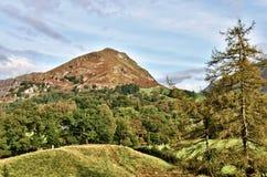 Widok Steru Crag przez lesistego krajobraz. Zdjęcie Royalty Free