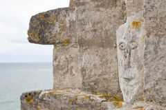 Widok Stevns Kliff - wapnia falezy w Dani Zdjęcie Royalty Free