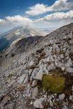Widok stromi skłony wysokie góry przy Granu Sasso obywatela Pa Zdjęcia Stock