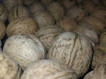 Widok susi orzechy włoscy w torbie fotografia royalty free