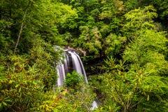 Widok Susi spadki w Nantahala lesie państwowym, Pólnocna Karolina obrazy royalty free