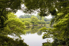 Widok sztuczny jezioro Fotografia Royalty Free