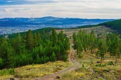 Widok tajga blisko Ulan-Ude miasta Zdjęcie Stock