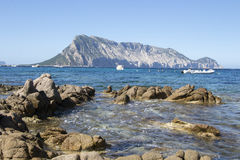 Widok Tavolara, Sardinia, Włochy Obraz Royalty Free