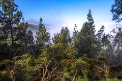 Widok Teide wulkan, Canarian wyspa, Hiszpania Zdjęcia Royalty Free