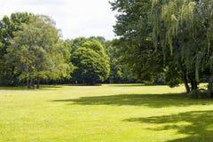 Widok traw drzewa przy Tiergarten w Berlin i pole Obraz Stock