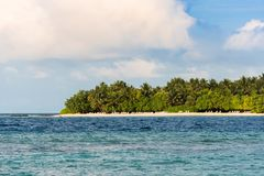 Widok tropikalna wyspa z kokosowymi palmami na piaskowatej plaży, Maldives, ocean indyjski Odbitkowa przestrzeń dla teksta Obrazy Royalty Free
