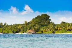 Widok tropikalna wyspa z kokosowymi palmami na piaskowatej plaży, Maldives, ocean indyjski Odbitkowa przestrzeń dla teksta Zdjęcie Royalty Free