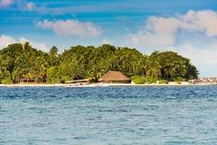 Widok tropikalna wyspa z kokosowymi palmami na piaskowatej plaży, Maldives, ocean indyjski Odbitkowa przestrzeń dla teksta Obraz Royalty Free