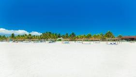 widok tropikalny ogród i plaża z ludźmi relaksuje i w tle Obrazy Royalty Free