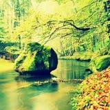 Widok w jesieni halną rzekę z zamazanymi fala, świeżymi zielonymi mechatymi kamieniami i głazami na brzeg rzeki zakrywającym z ko Zdjęcie Royalty Free