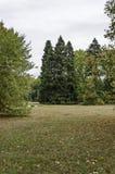Widok w kierunku lasu i halizny w Krajowym zabytku krajobrazowej architektury park muzealny Vrana w poprzednim czasu pałac królew Obraz Royalty Free