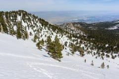 Widok w kierunku palm springs i Coachella doliny od góry San Jacinto stanu parka, Kalifornia fotografia stock