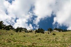 Widok w kierunku wierzchołka montain z dramatycznym nieba tłem Zdjęcia Royalty Free