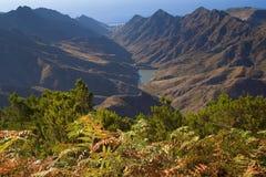 Widok w naturalnym parku anaga Zdjęcie Stock