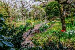 Widok w pięknym wiosna ogródzie Zdjęcia Royalty Free
