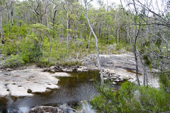 Widok Walpole Rzeczna zachodnia australia w jesieni obrazy stock
