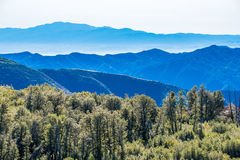 Widok warstwy natur góry i natur drzewa Zdjęcie Stock