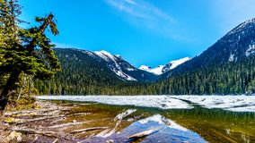 Widok wciąż częsciowo marznący Niski Joffre jezioro w Brzegowym pasmie górskim Obraz Royalty Free