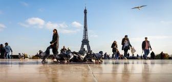 Widok wieża eifla od Trocadero Zdjęcia Stock