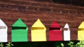 Widok wiejski ul Poruszające pszczoły przed ulem Depresja DOF zbiory wideo