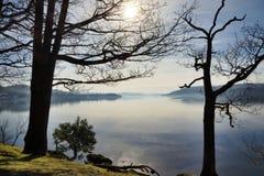 Jeziorny Windermere obramiający dwa drzewami Zdjęcia Royalty Free