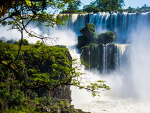 Widok woda spada w Cataratas Del Iguazu parku Fotografia Stock