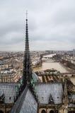 Widok wonton rzeka od Notre-Dame katedry Fotografia Stock