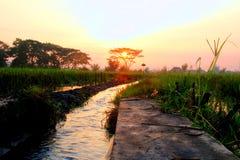 Widok wschód słońca obrazy royalty free