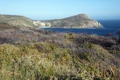 Widok wzdłuż wybrzeża przylądkowy fotografia stock