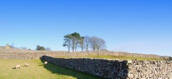 widok Yorkshire Obrazy Royalty Free