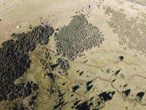 Widok z lotu ptaka łąka w Pyrenean, Francja fotografia royalty free