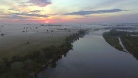 Widok z lotu ptaka świt nad rzeką w mgle zbiory wideo