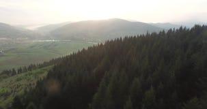 widok z lotu ptaka Świt nad wzgórzami z zwartym lasem zbiory