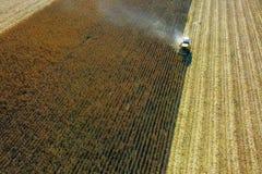Widok z lotu ptaka żółty żniwiarz na kukurydzanym polu Zdjęcia Stock